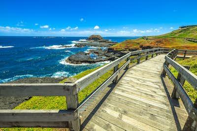 Phillip Island