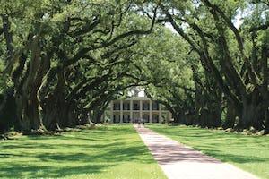 lantation,_Louisiana-OAK_ALLEY_PLANTATION_ENTRANCE