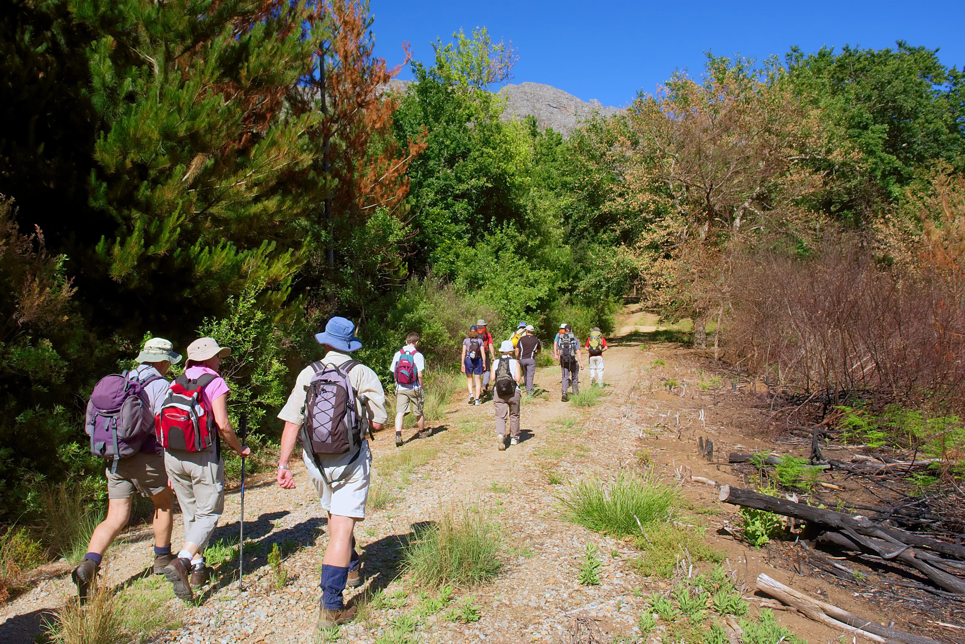 Short Walking Tours In Japan