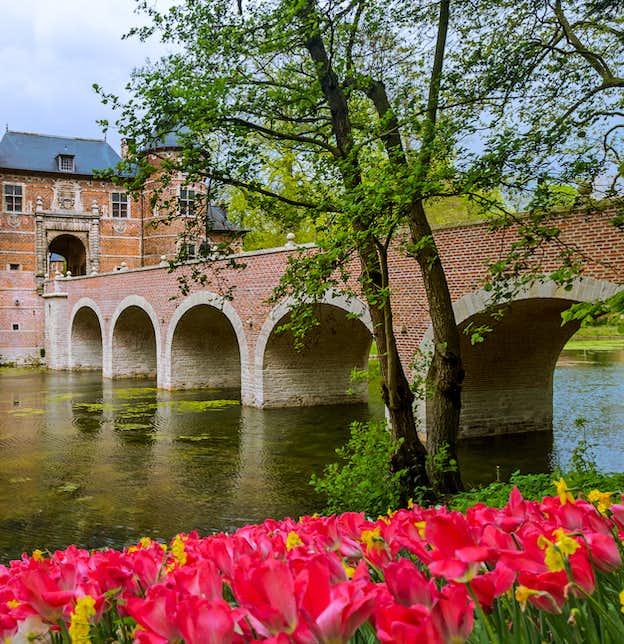 Floralia Flower Show, Dutch Bulbfields, Antwerp & Ghent