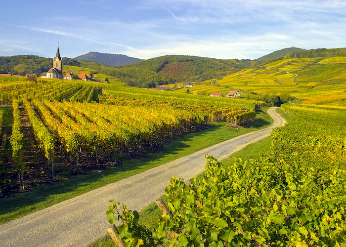 Alsace and Wine Route