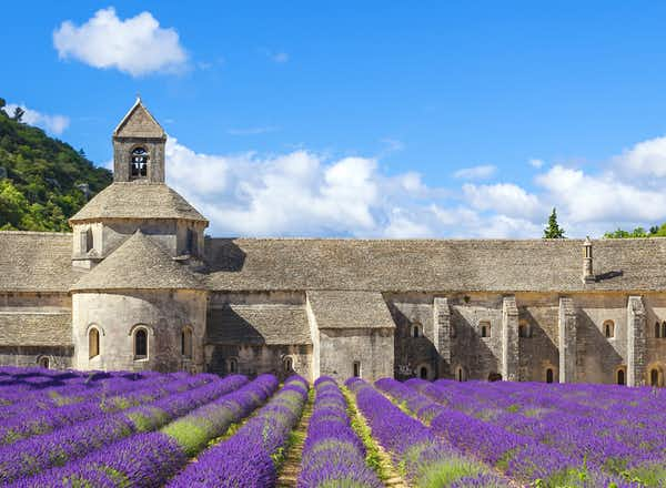 The Perfumes & Colours of Provence