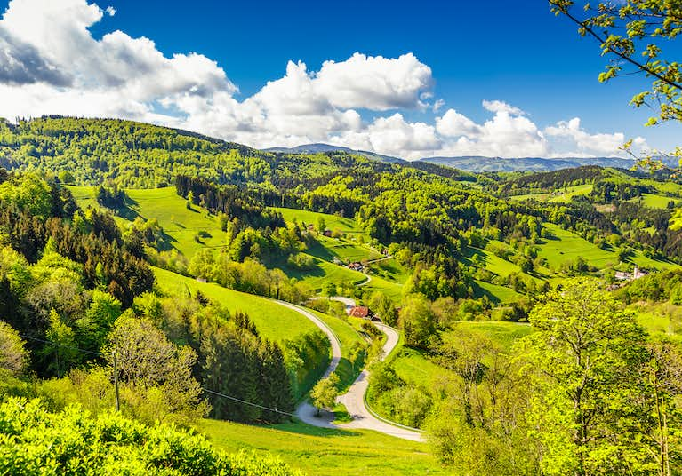 The Enchanting Black Forest The Rhine Valley Tour