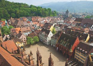 The Enchanting Black Forest & the Rhine Valley