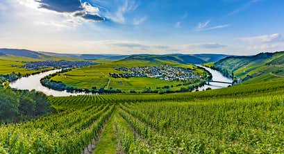 Valkenburg, Amsterdam & the Rhine & Moselle Valleys