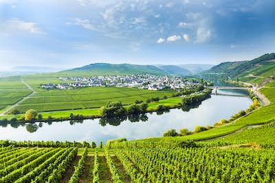 Moselle Valley & Wine Tasting