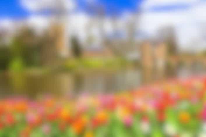 Floralia Spring Flower Show