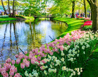 Dutch Bulbfields Cruise & Highlights of Holland by Air