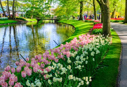 Springtime in the Dutch Bulbfields and Amsterdam