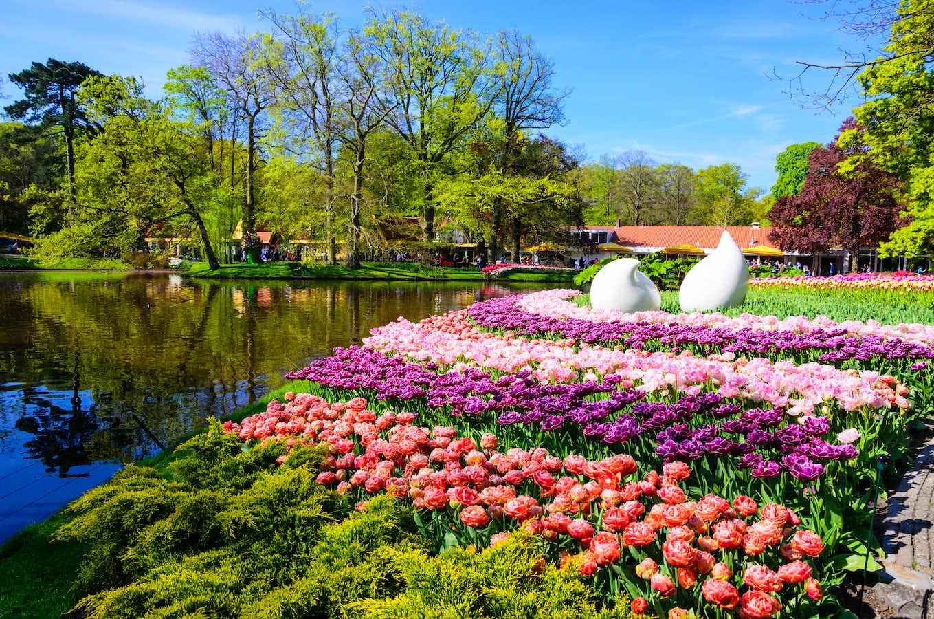 Dutch Bulbfields Cruise & Highlights of Holland by Air