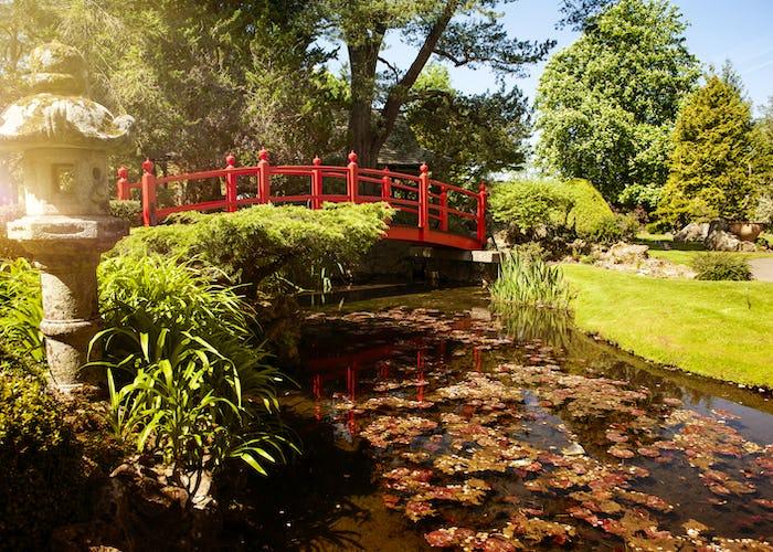 Irish National Stud and Japanese Gardens