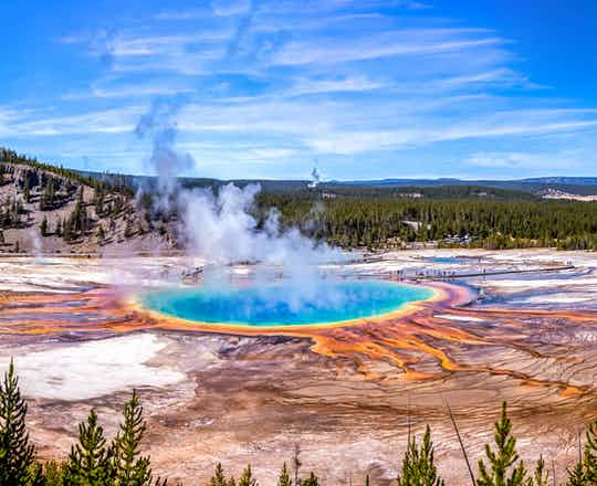 Yellowstone Guided Sightseeing Tour